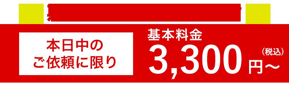 期間限定!!本日限り1000円~